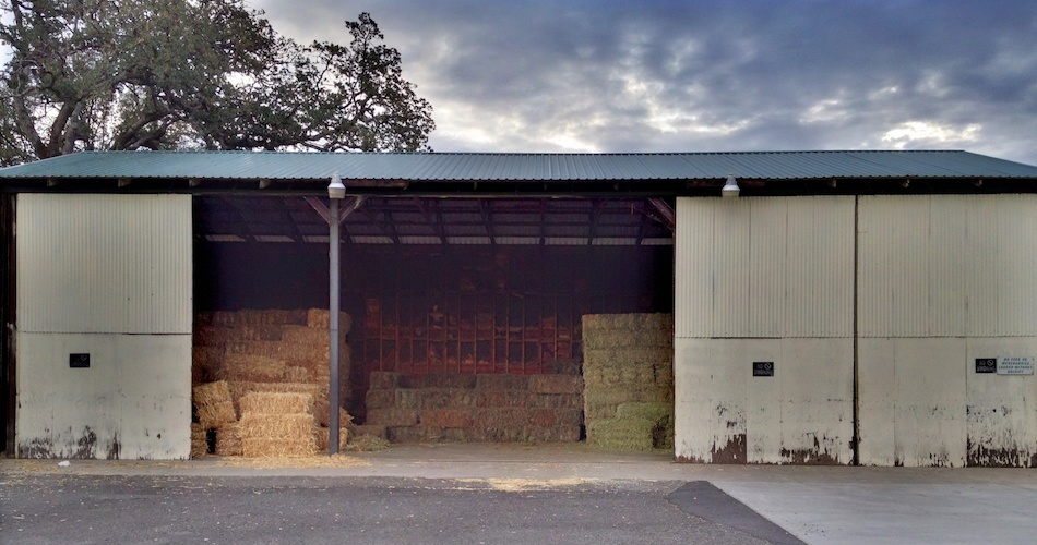 Hay Shavings - Palo Cedro Feed