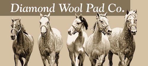 Diamond Wool Pad Company