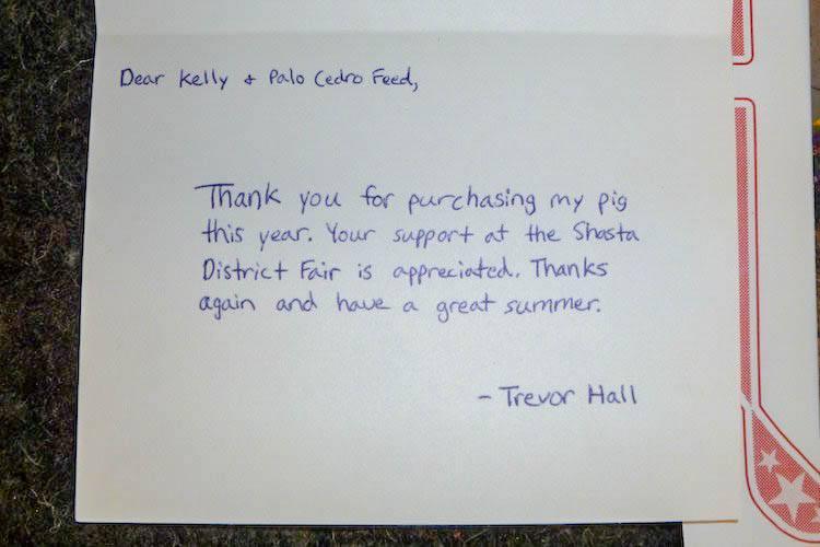 Thank You's | Palo Cedro Feed